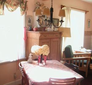 Cat's Dining Room