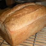 Baked loaf (Simple Sourdough)