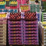 Apple cultivars at supermarket
